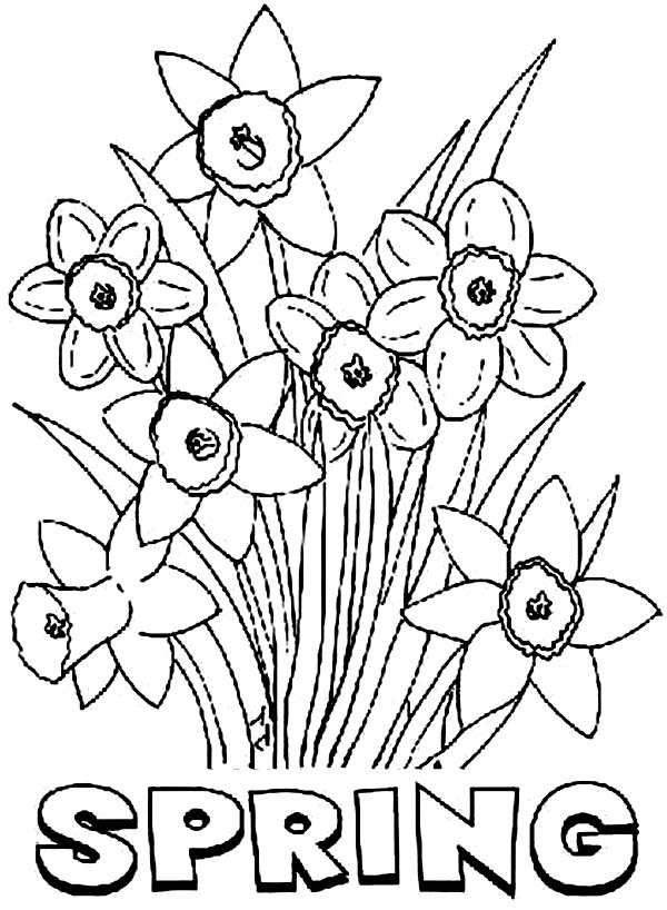 spring coloring pages for kids spring flower coloring pages to download and print for free pages spring coloring for kids