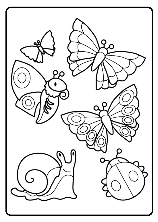 spring coloring pages for kids spring theme animals coloring pages for kids free pages for coloring kids spring