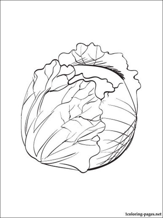 sprout coloring pages brussel sprout coloring page 2019 open coloring pages pages sprout coloring