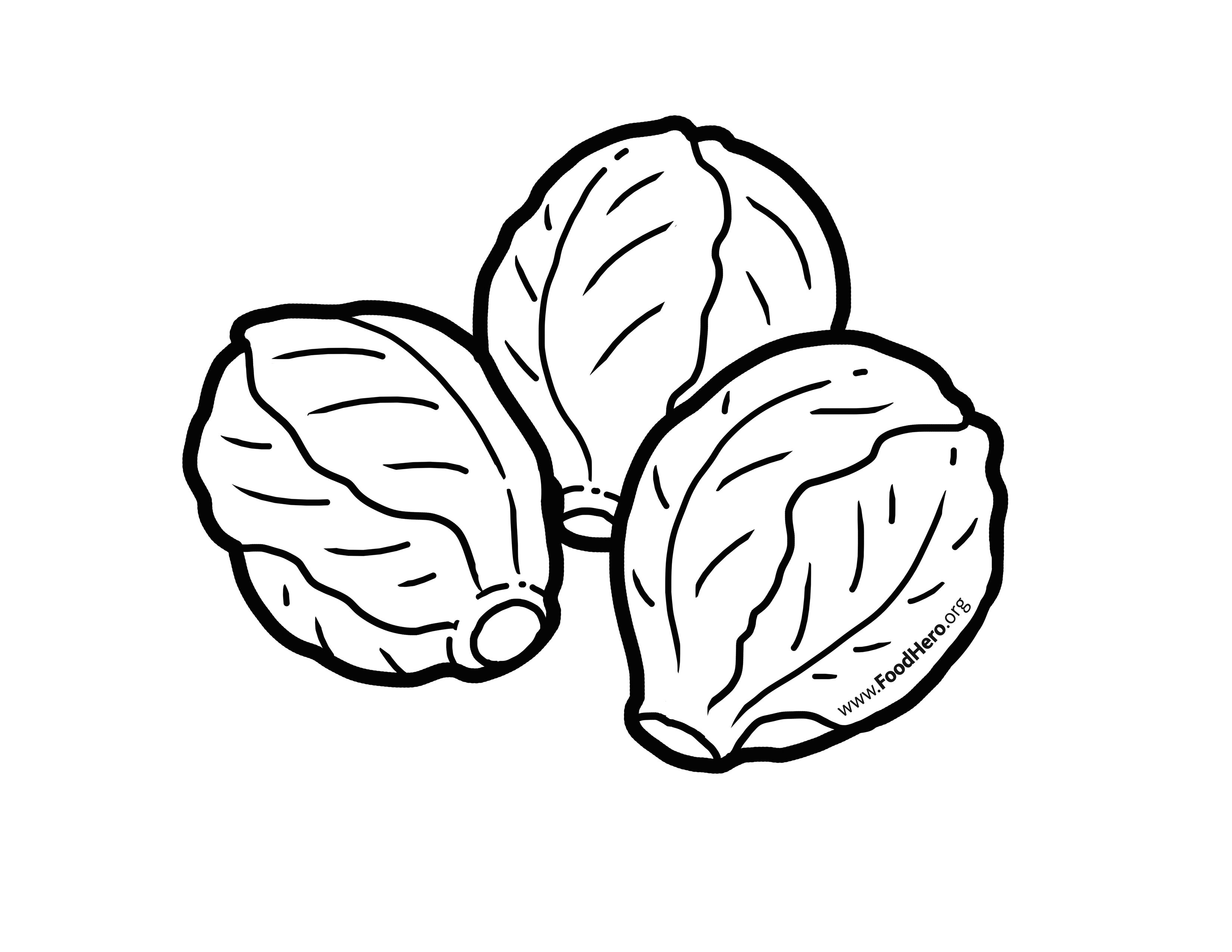 sprout coloring pages brussel sprout coloring page 2019 open coloring pages sprout pages coloring