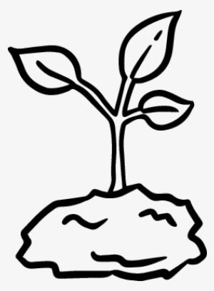 sprout coloring pages brussel sprouts coloring sheet google search coloring coloring pages sprout