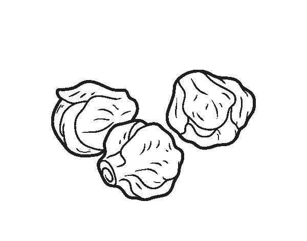 sprout coloring pages brussels sprouts illustration foodhero bullentinboards sprout pages coloring
