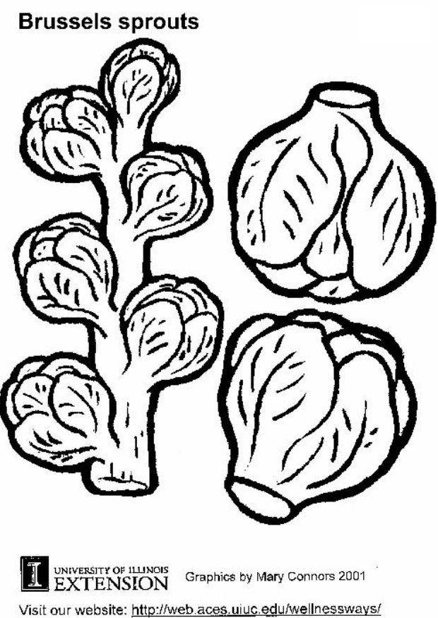 sprout coloring pages sprouts coloring page ultra coloring pages sprout pages coloring