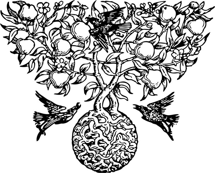 stevie nicks coloring pages 423 best stained glass coloring images coloring books stevie pages nicks coloring