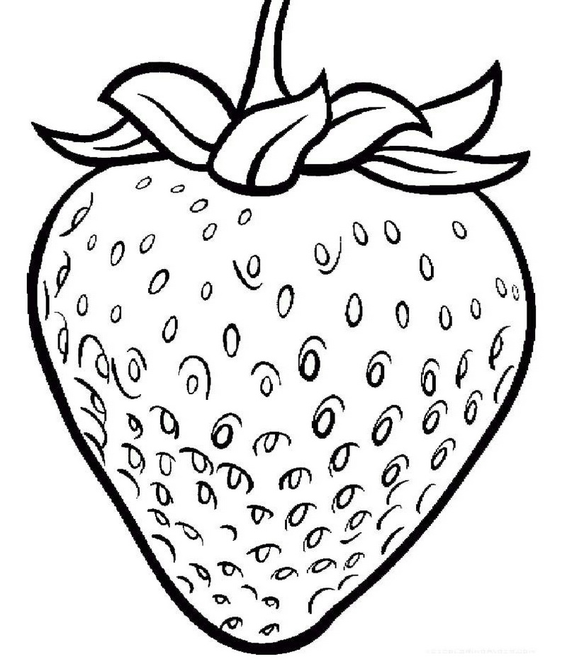 strawberry coloring page nice strawberry bold outline coloring page fruit strawberry coloring page