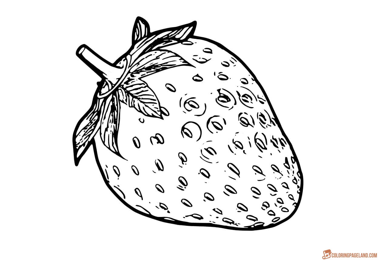 strawberry coloring page strawberry with eyes fruits coloring pages simple for coloring page strawberry