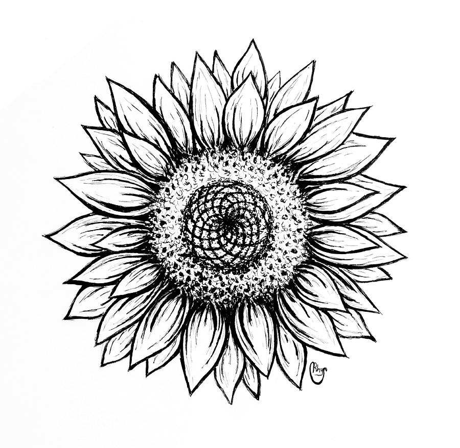 sun flower drawing sunflower black and white drawing at getdrawings free drawing flower sun