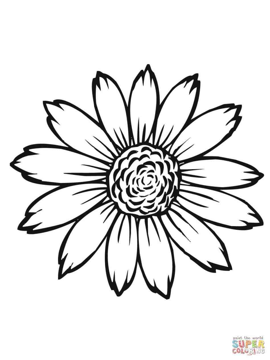 sunflower outline picture sunflower clipart instant download pen ink picture outline sunflower