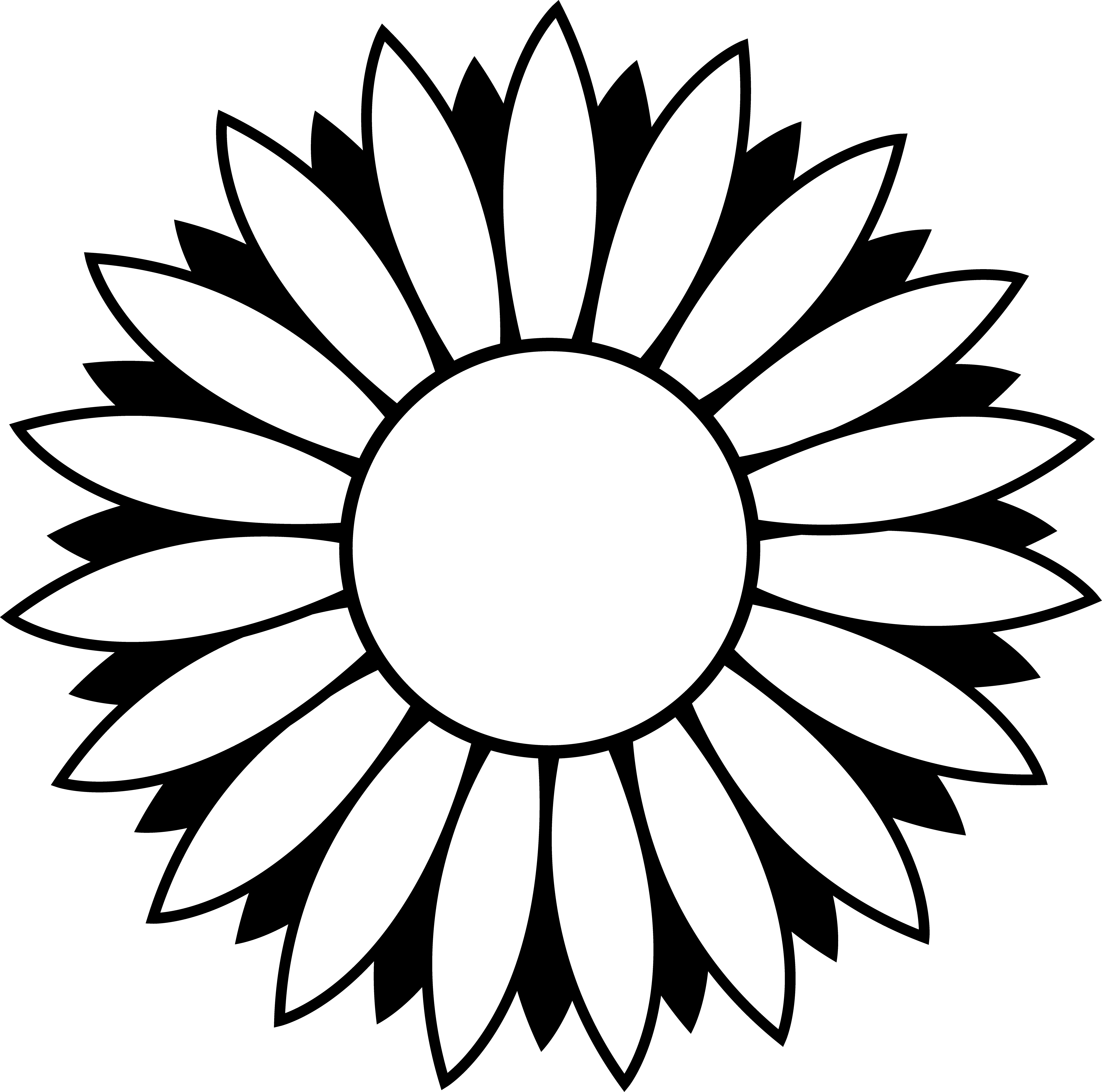 sunflower outline picture sunflower outline clipart best outline sunflower picture