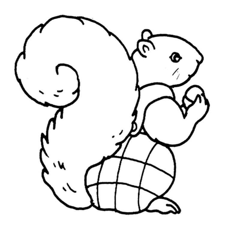 tails coloring page tails x tailsko sketch coloring page coloring tails page