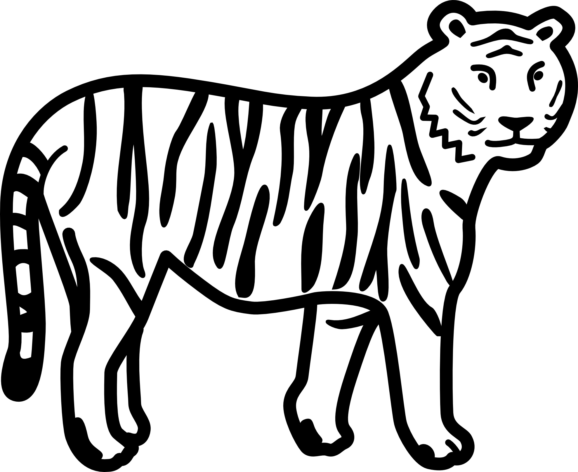 tiger images for colouring free printable tiger coloring pages for kids for tiger colouring images