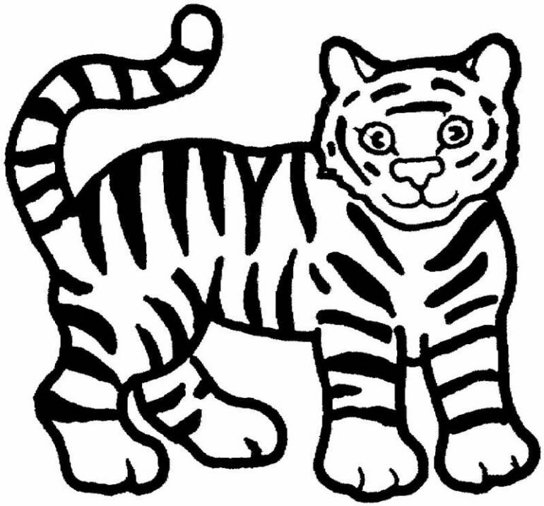 tiger images for colouring tigers to color for children tigers kids coloring pages colouring images tiger for