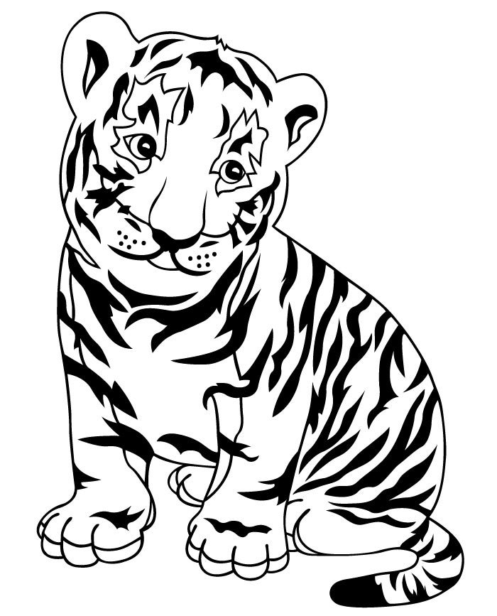 tiger pictures to colour tiger coloring pages free download on clipartmag colour tiger pictures to
