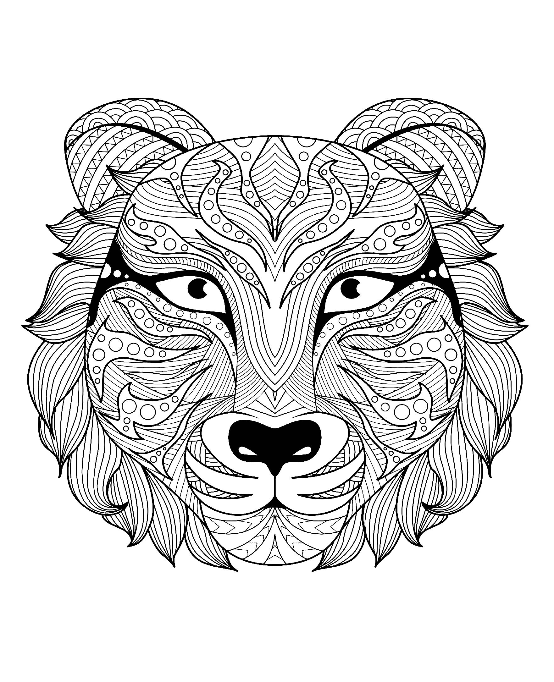 tiger printable coloring pages free printable tiger coloring pages for kids pages printable tiger coloring