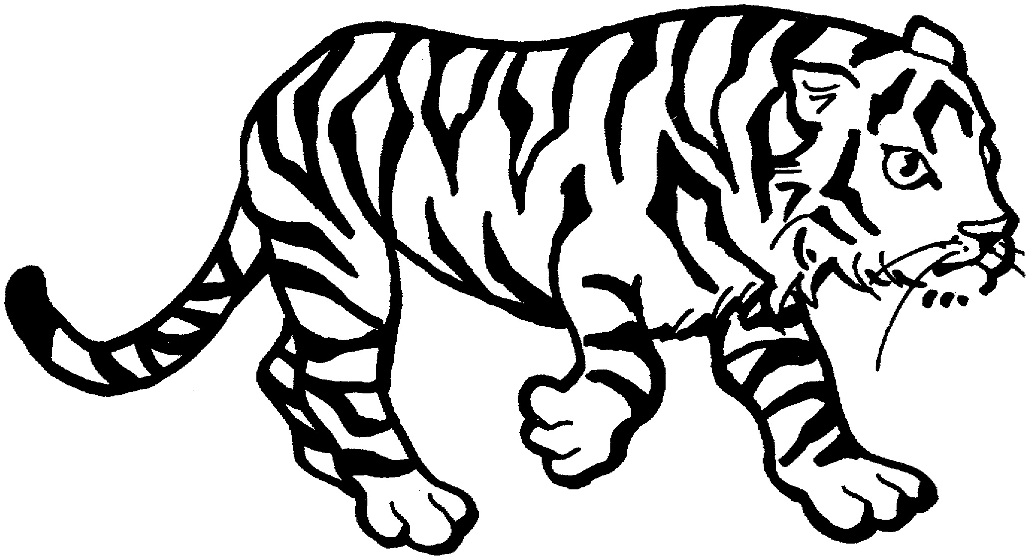 tiger printable coloring pages siberian tiger coloring download siberian tiger coloring printable tiger pages coloring