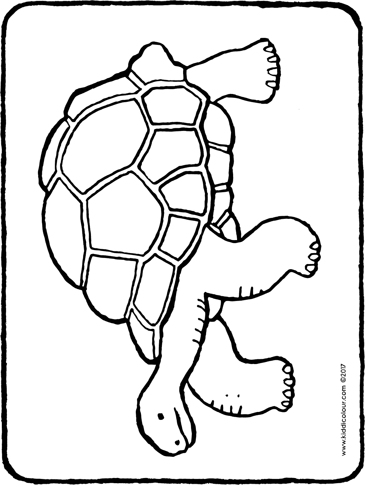 tortoise coloring page smiling tortoise coloring pages download free smiling page tortoise coloring