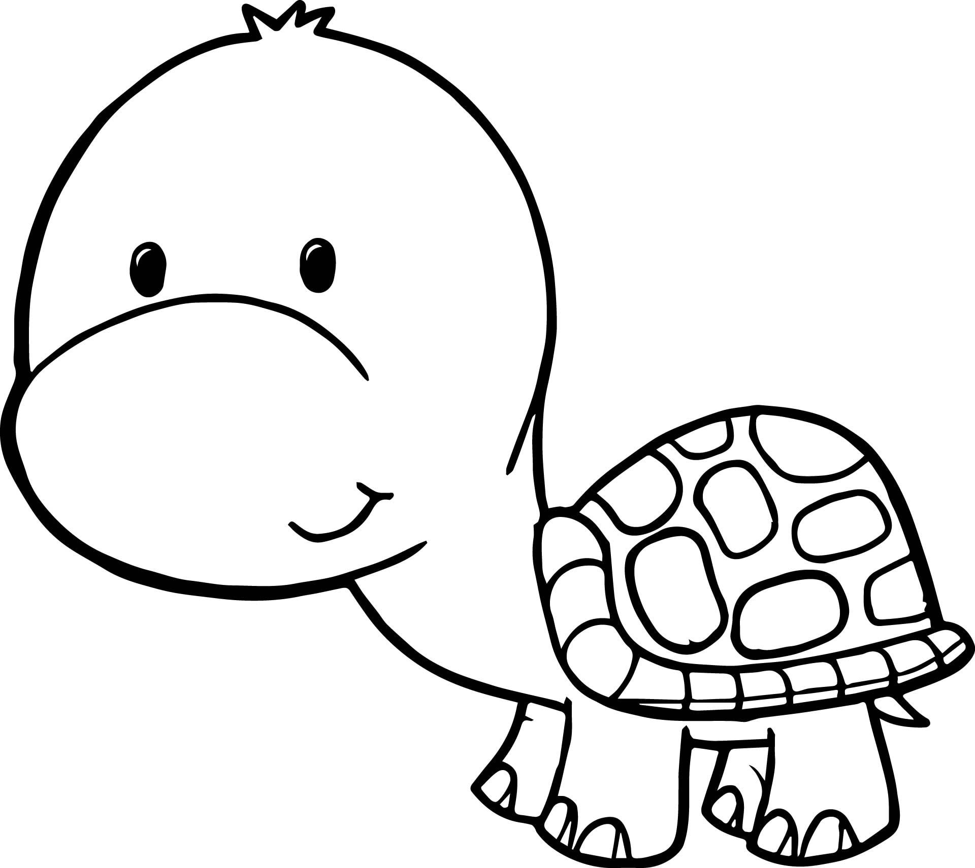 tortoise coloring page turtles to download for free turtles kids coloring pages coloring page tortoise