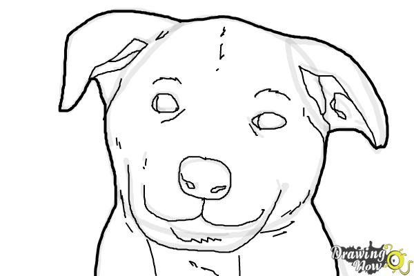 traceable dog pictures how to draw a dog face drawingnow pictures traceable dog