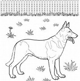traceable dog pictures image result for german shepherd drawing traceable dog pictures traceable dog