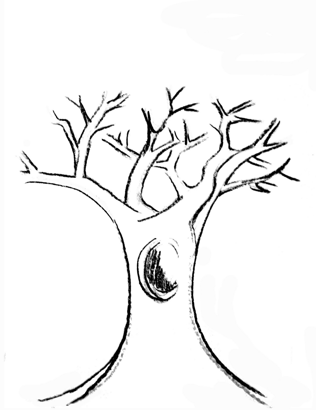 tree trunk coloring page tree trunk drawing at getdrawings free download coloring trunk page tree