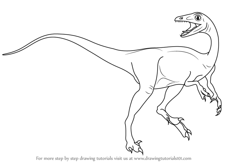 troodon coloring page troodon coloring page page troodon coloring