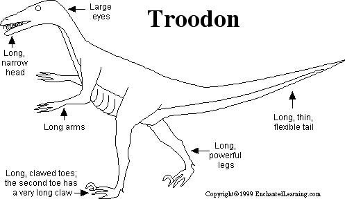 troodon coloring page troodon printout zoomdinosaurscom page troodon coloring