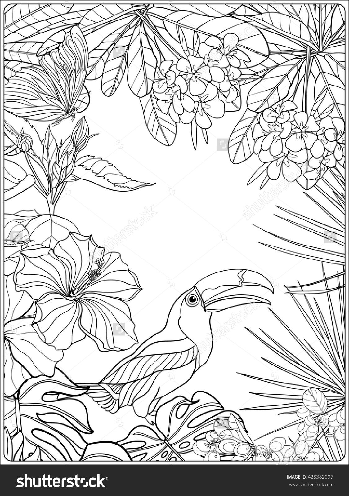 tropical bird coloring pages colorful parrots tropical birds pdf coloring book for pages coloring tropical bird