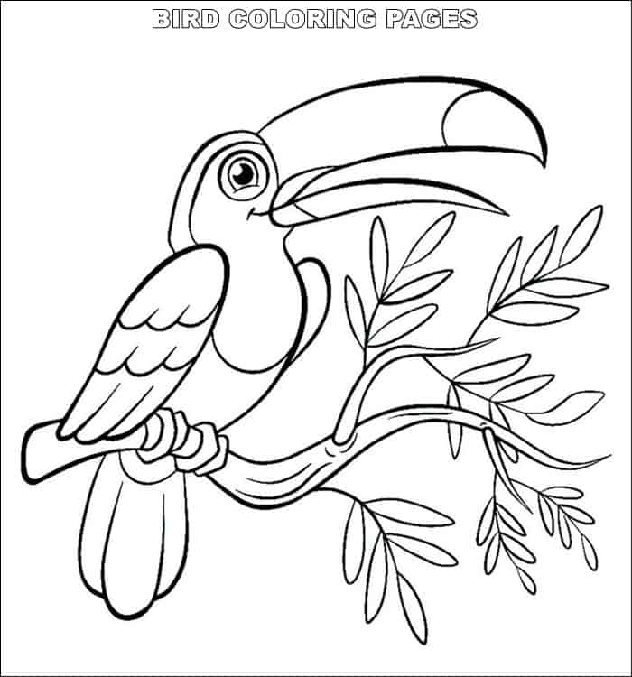 tropical bird coloring pages realistic tropical bird coloring coloring pages coloring tropical pages bird