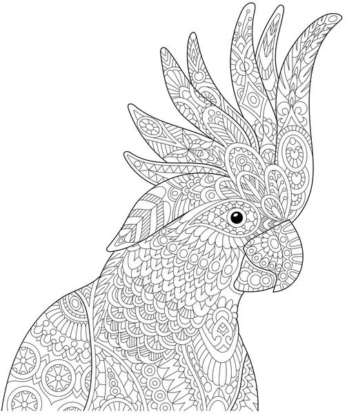 tropical bird coloring pages tropical bird animal coloring pages coloring pages tropical bird