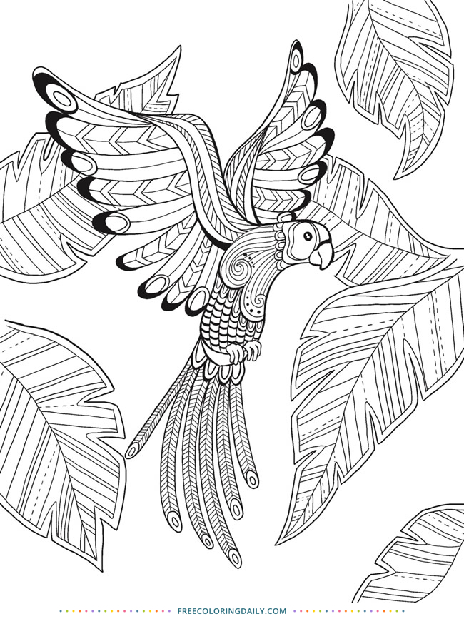 tropical bird coloring pages tropical rainforest bird coloring pages coloring bird pages tropical