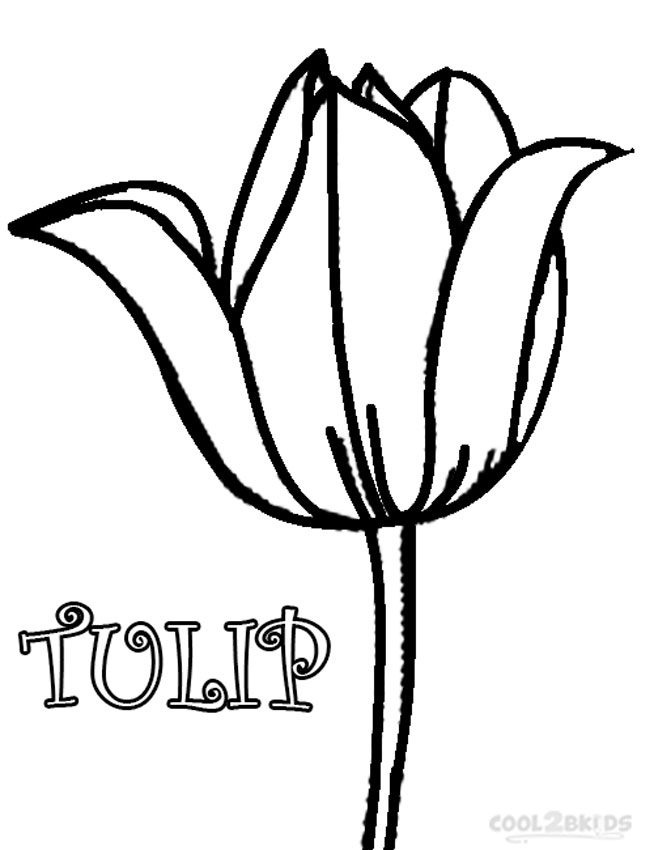 tulip colouring free printable tulip coloring pages for kids colouring tulip 1 1