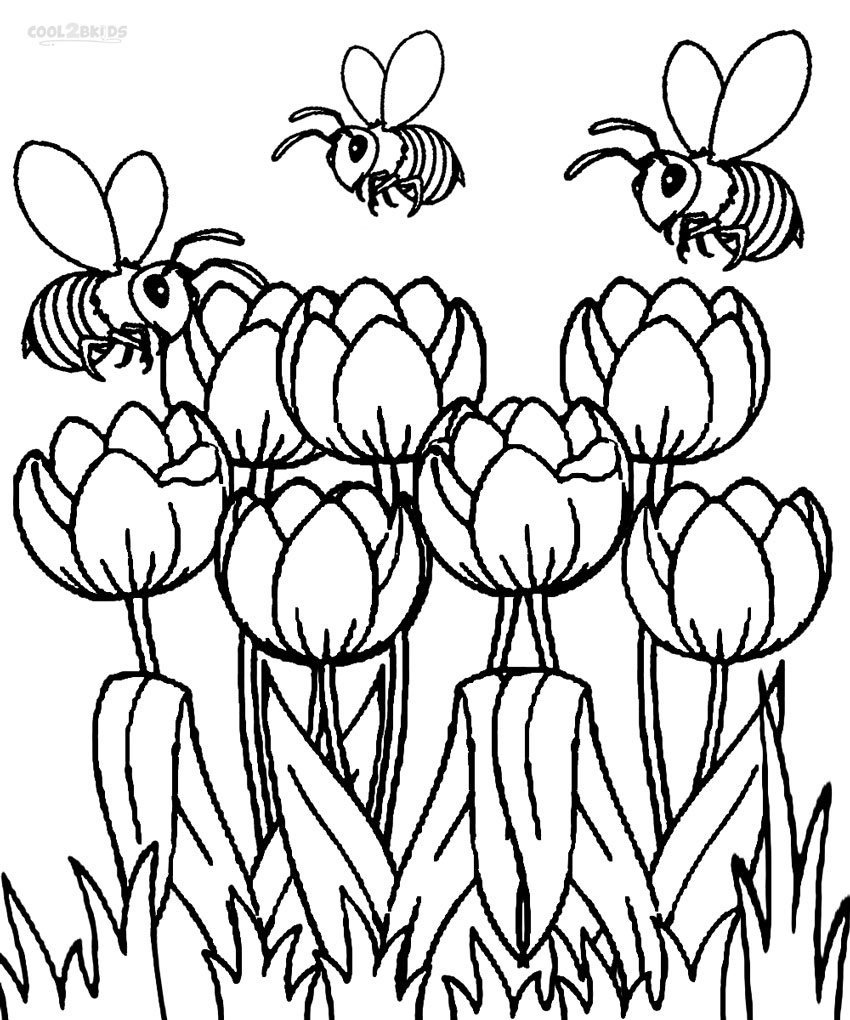 tulip colouring large printable tulips clipart best tulip colouring