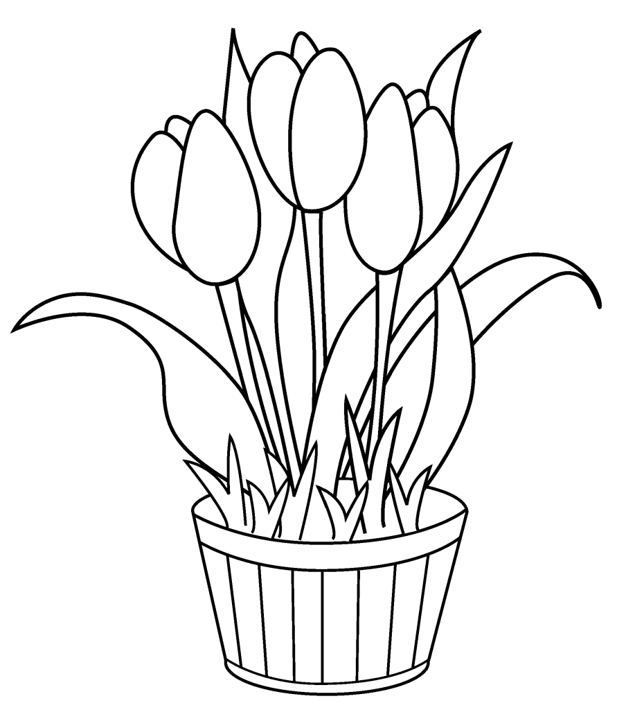 tulip colouring tulip coloring pages print color craft tulip colouring