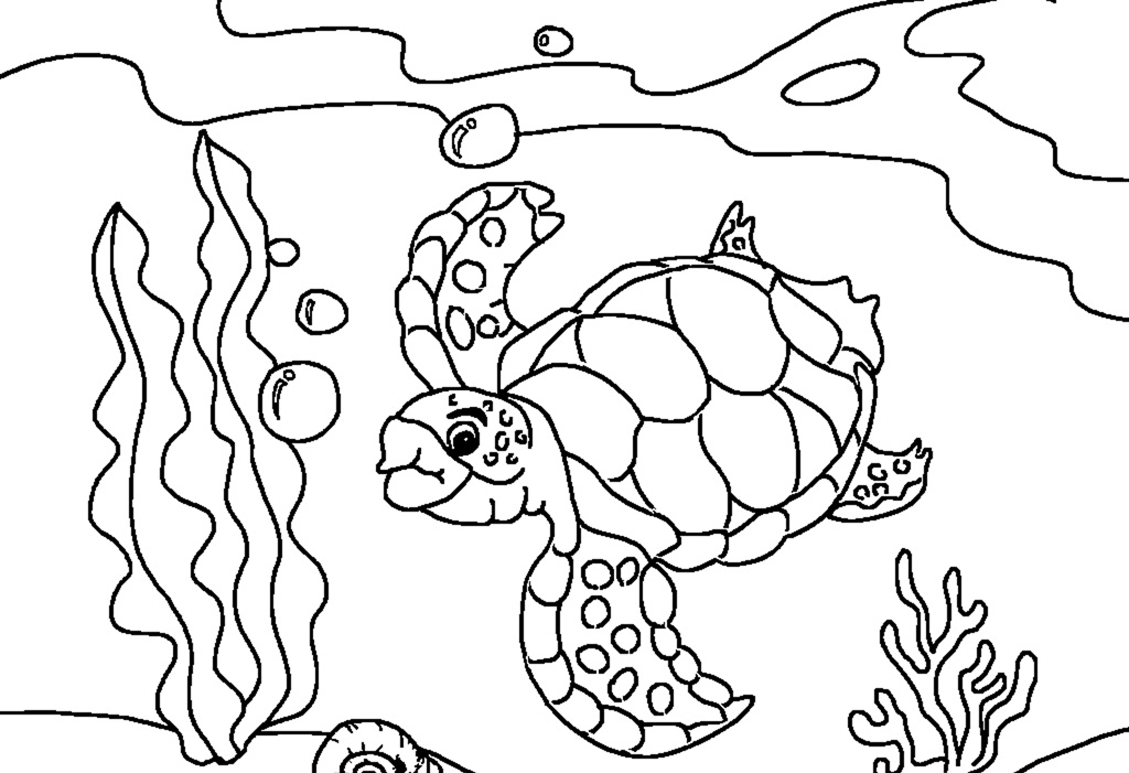 turtle coloring book page baby turtle coloring page free printable coloring pages book turtle page coloring