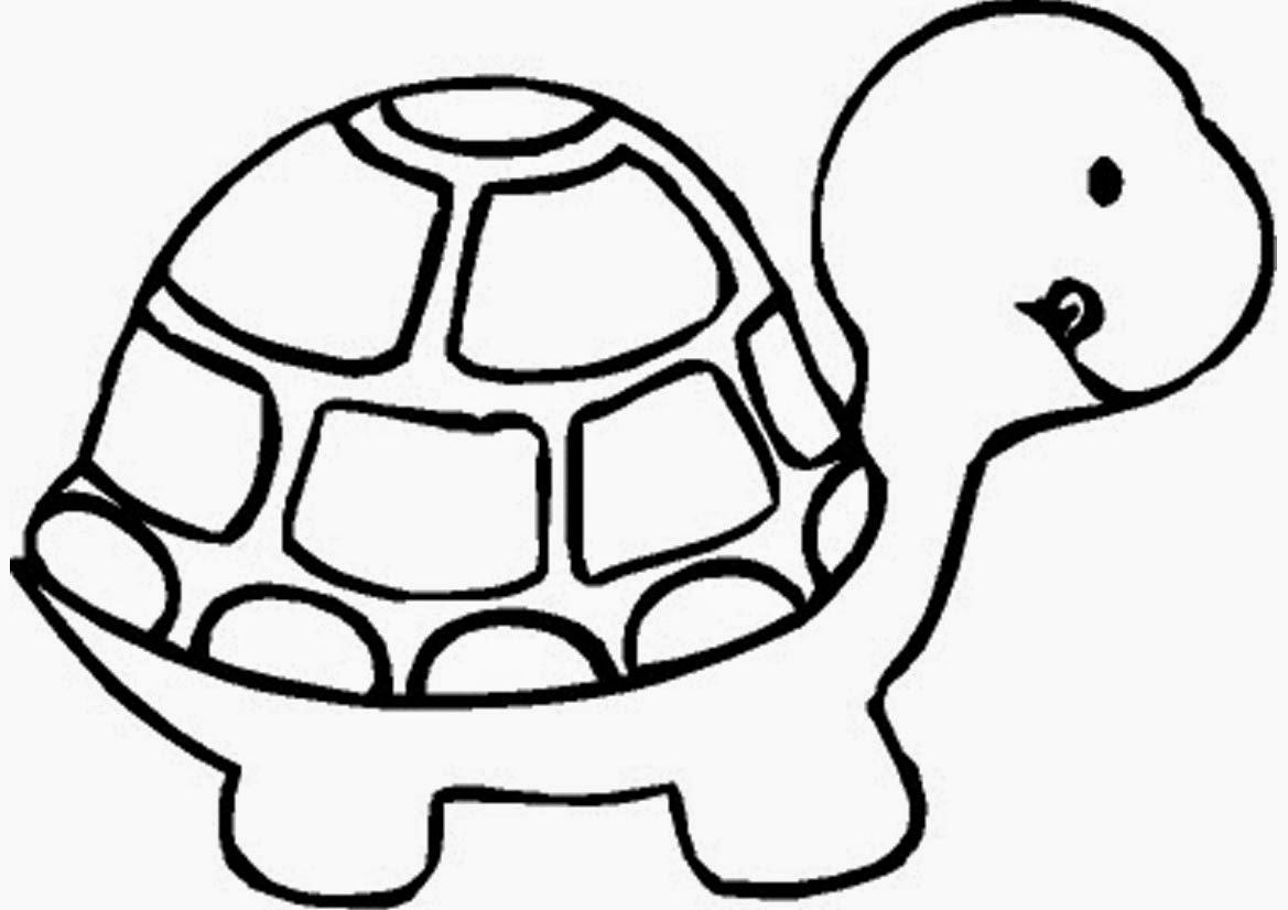 turtle coloring book page print download turtle coloring pages as the turtle book coloring page