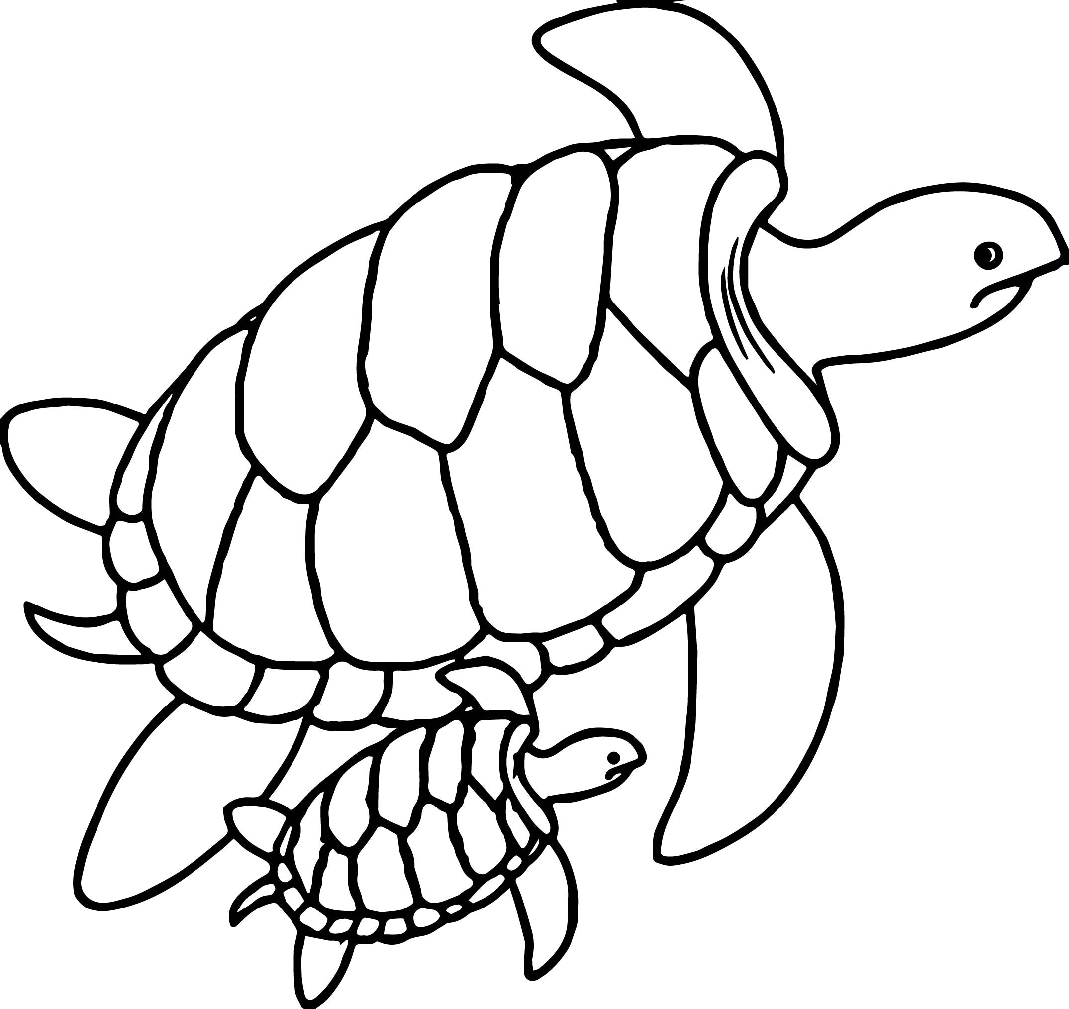 turtle coloring book page zentangle turtle coloring page free printable coloring pages coloring turtle book page