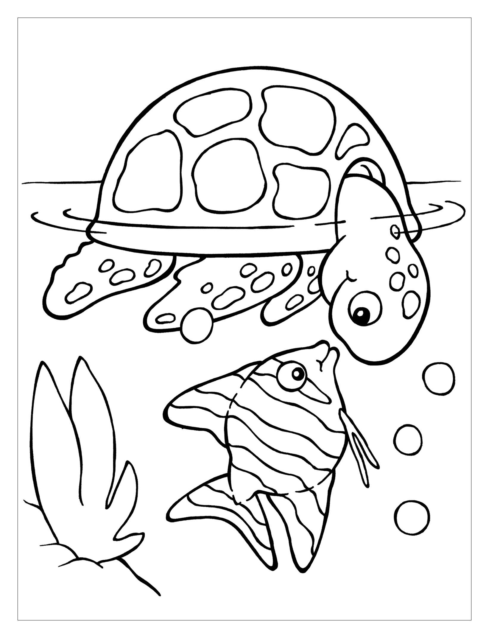 turtle pictures to color cute baby turtle coloring pages bestappsforkidscom color pictures turtle to