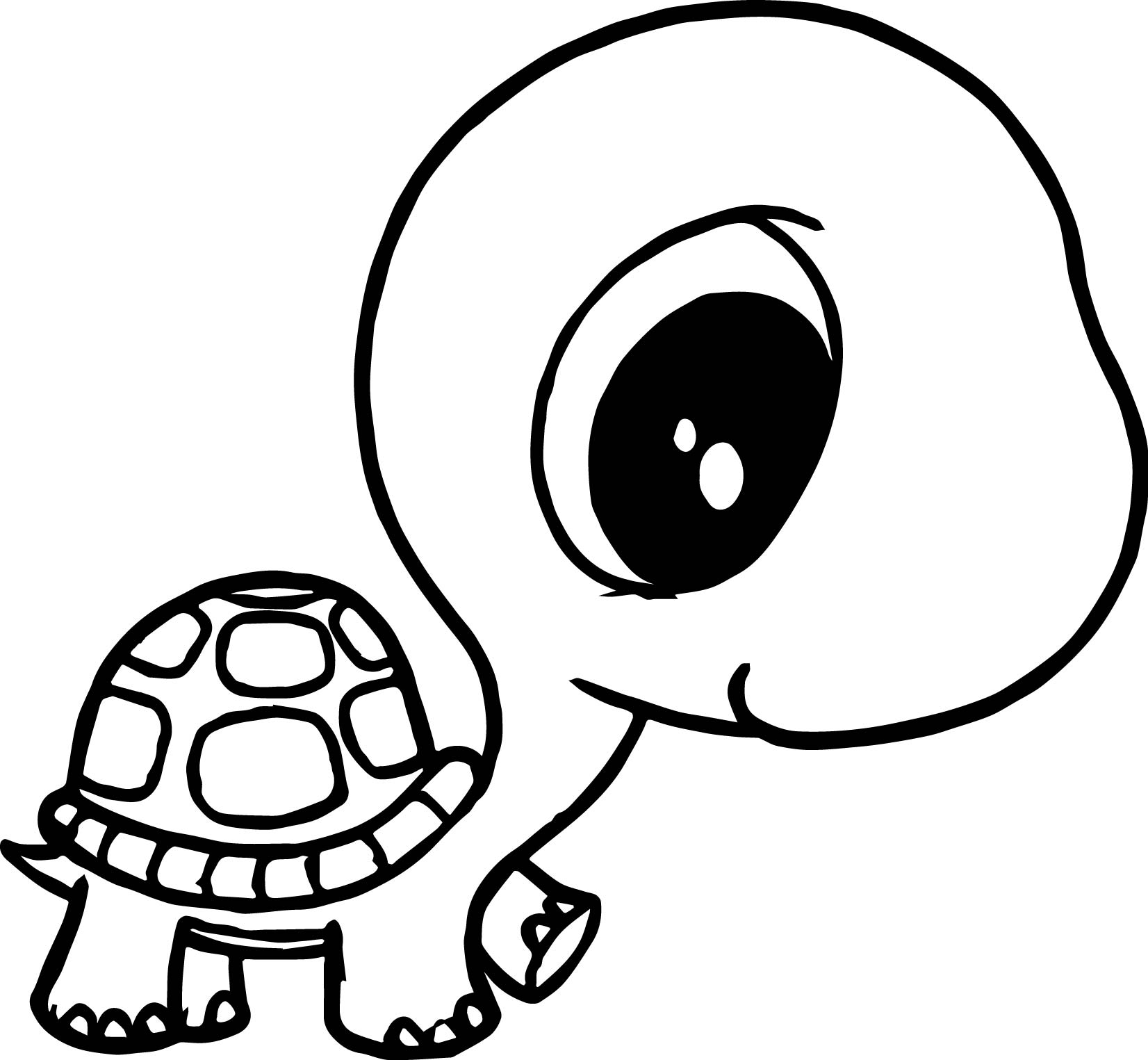 turtle pictures to color print download turtle coloring pages as the to color pictures turtle