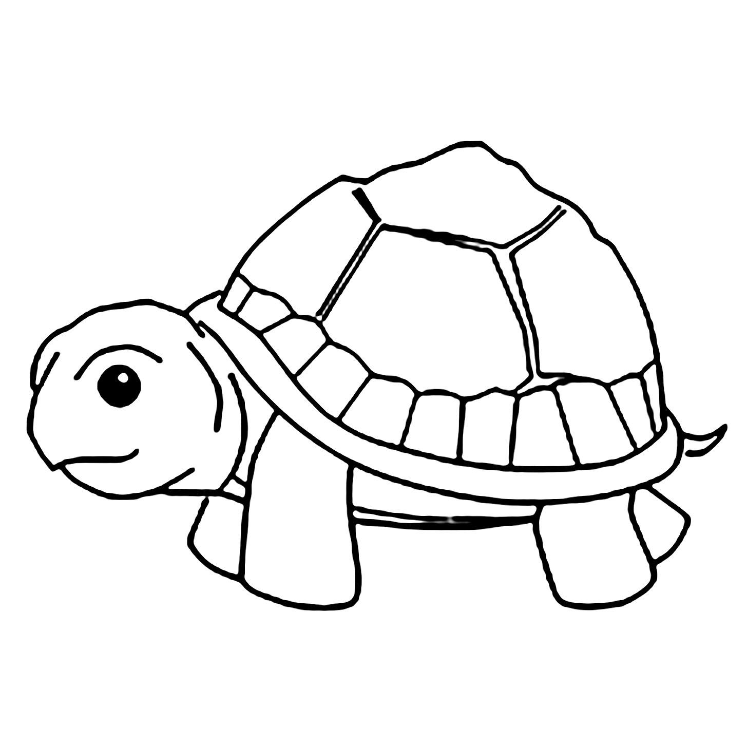 turtle pictures to color sea turtle clipart black and white clipart panda free turtle color to pictures
