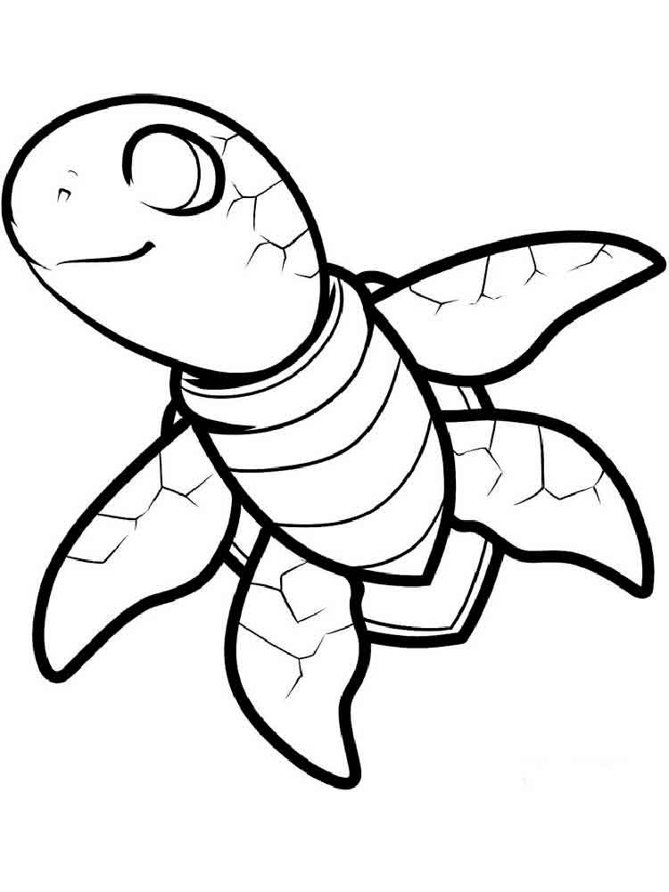 turtle pictures to color top 20 free printable turtle coloring pages online pictures color turtle to