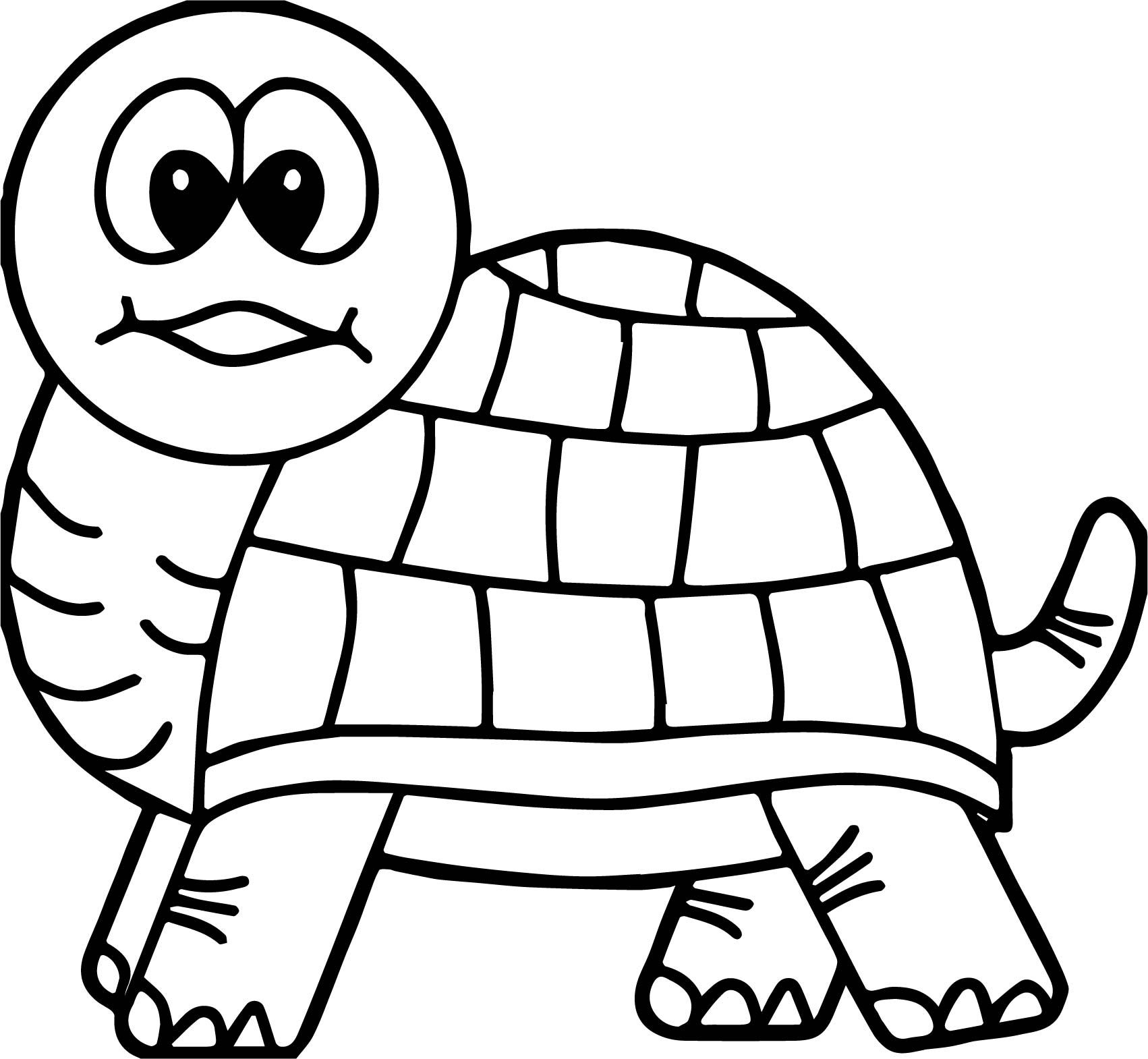 turtle pictures to color turtles to download for free turtles kids coloring pages pictures turtle to color