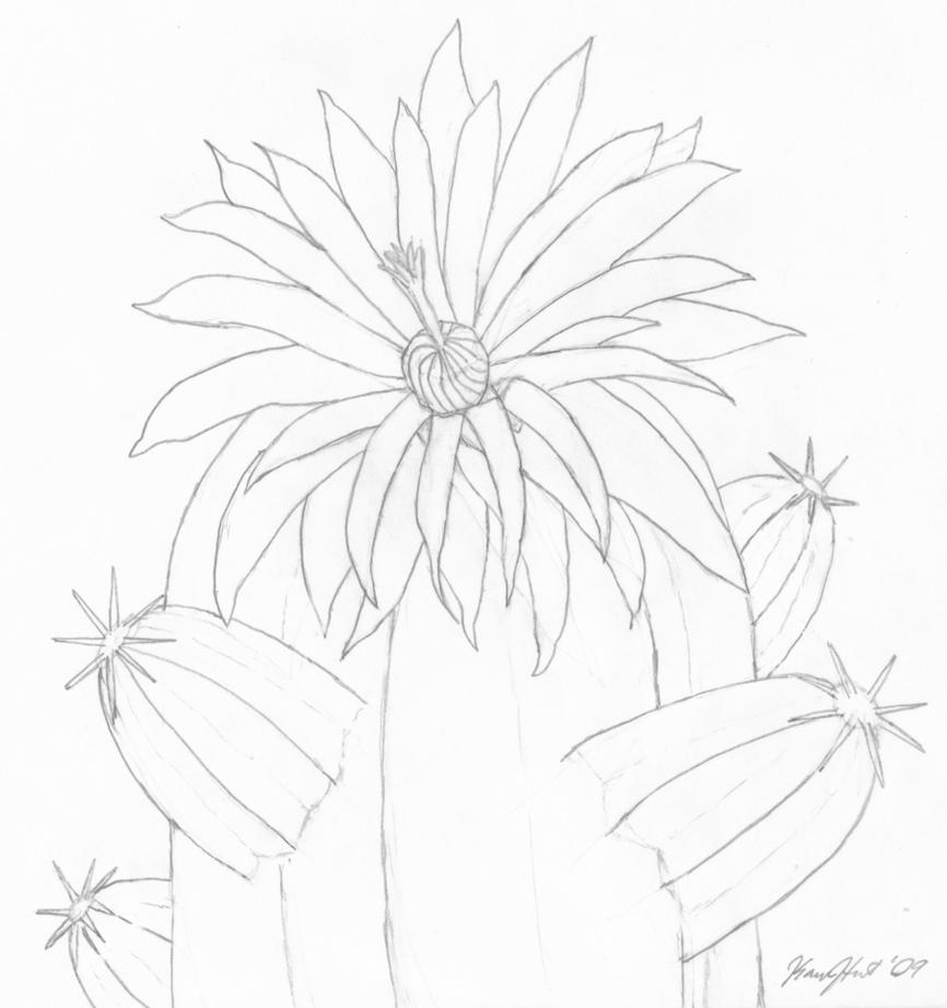 uncolored pictures of flowers bandung documentary photo uncolored flower flowers pictures uncolored of