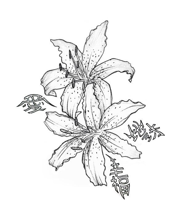 uncolored pictures of flowers uncolored daisy clip art at clkercom vector clip art pictures uncolored of flowers