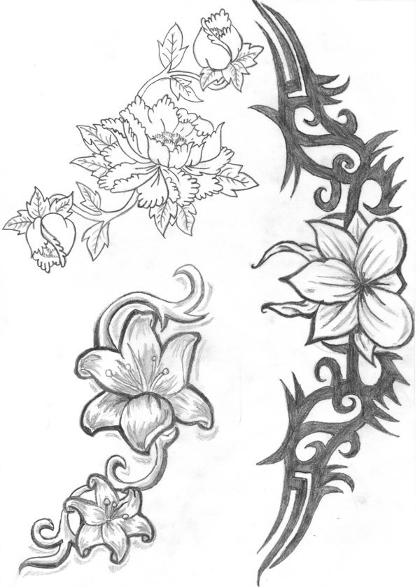 uncolored pictures of flowers uncolored flower 2015 by giorgi meurmishvili flowers uncolored pictures of