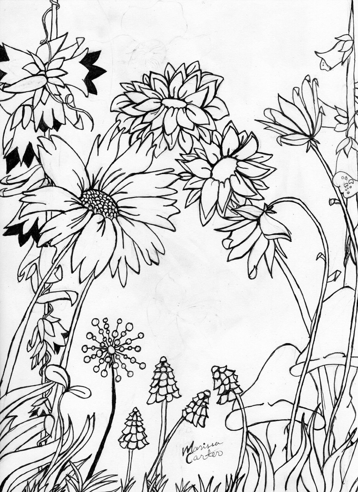 uncolored pictures of flowers uncolored flowers for adult coloring book in zenart style pictures flowers of uncolored