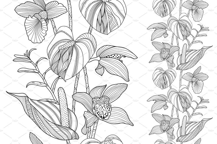 uncolored pictures of flowers uncolored lilies to draw or trace coloring books flowers uncolored pictures of