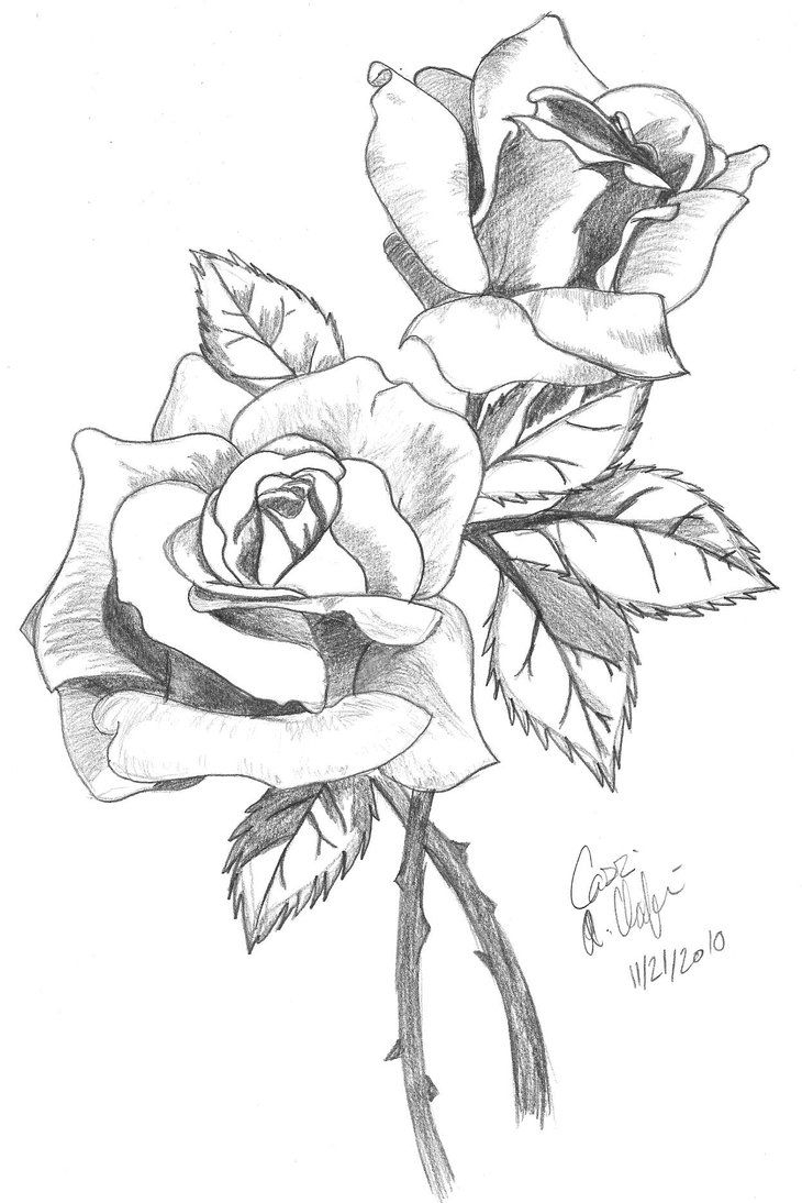 uncolored pictures of flowers uncolored pictures of flowers pictures uncolored of flowers