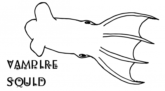 vampire squid coloring page vampire squid coloring page crokky pages az sketch coloring vampire page squid