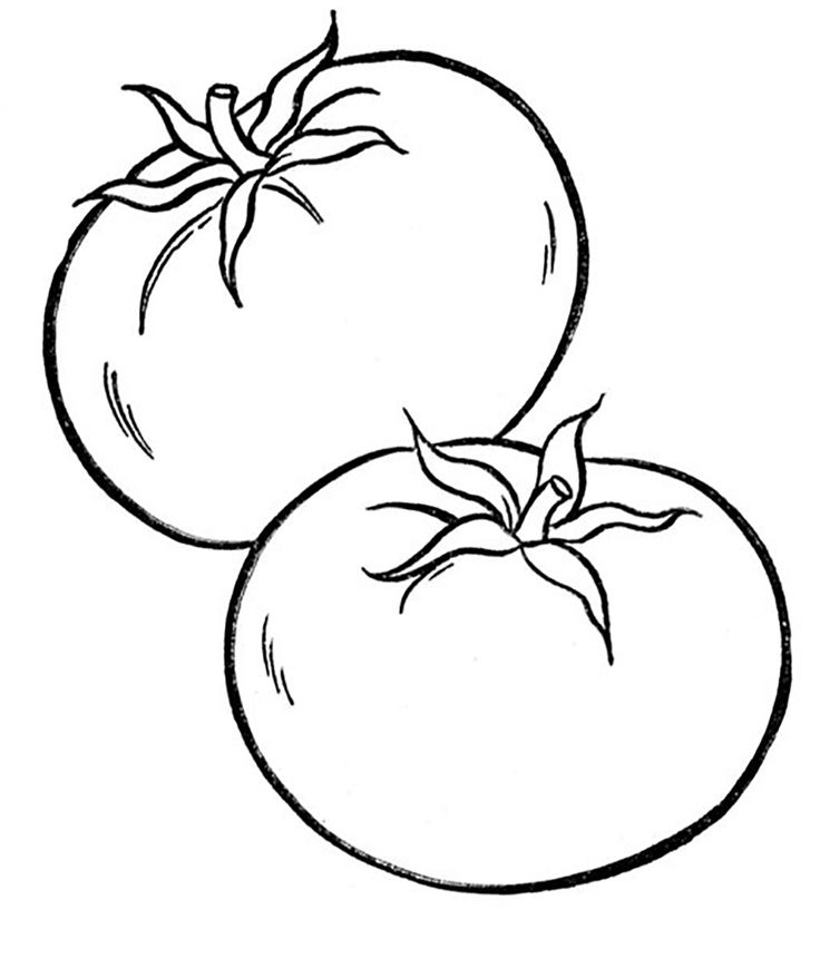 vegetable pictures to color vegetable coloring pages for childrens printable for free pictures color vegetable to