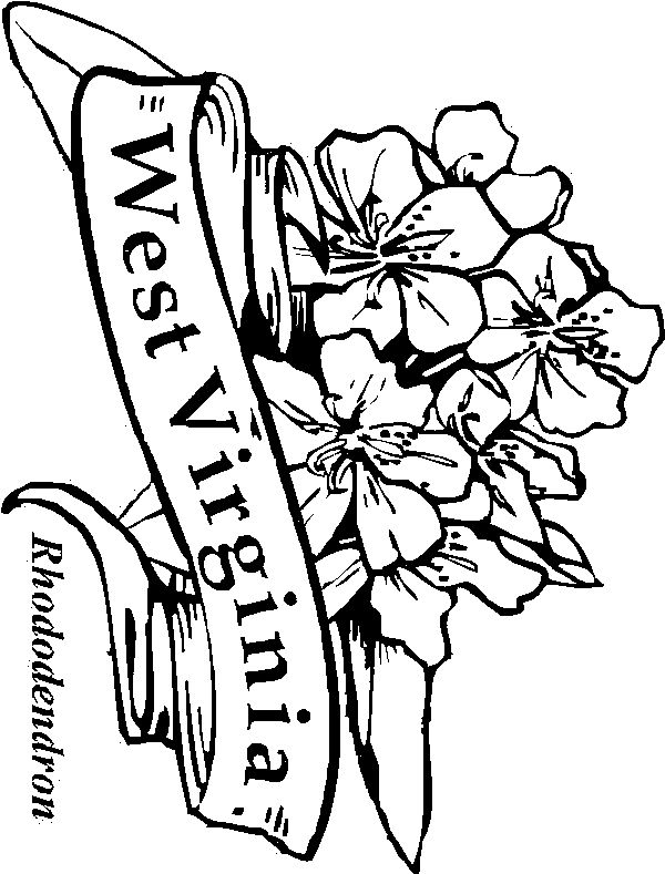 virginia state symbols coloring pages west virginia state symbols coloring page free printable pages symbols virginia coloring state